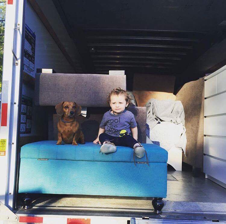 Looking skeptical in the moving truck!